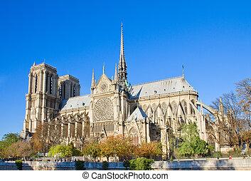 catedral dama notre, parís, francia