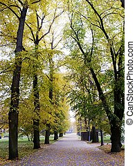 catedral, parque, em, vilnius, cidade