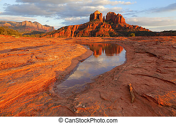 catedral, reflexão, rocha