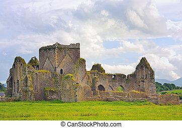 catedral, s., patrick's, dublín, irlanda