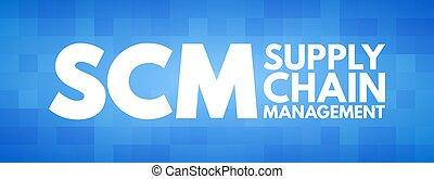 catena, acronimo, scm, amministrazione, -, fornitura
