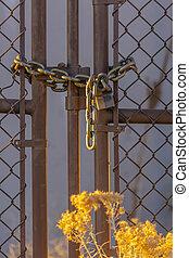 catena, recinto, lucchetto, cespuglio, collegamento, chiuso