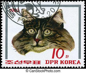 cat(gray), nord, 1983, -, corea, circa