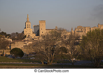 Cathedral and Palais des Papes Palace; Avignon, France