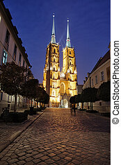 Cathedral at Night in City of Wroclaw