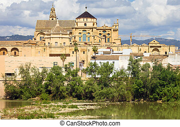 Cathedral Mosque of Cordoba - Mezquita Cathedral (The Great ...