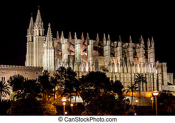 Cathedral of Palma de Mallorca La Seu night view
