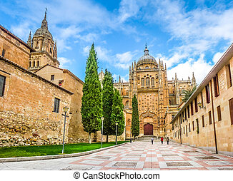 Cathedral of Salamanca, Castilla y Leon, Spain
