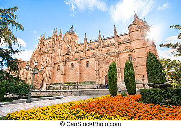 Cathedral of Salamanca, Spain - Beautiful view of Cathedral ...