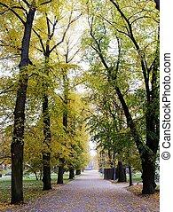 Cathedral park in Vilnius city