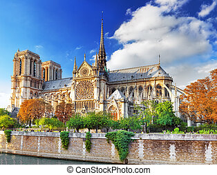 cathedral.paris., paryż, notre, od, france., dama