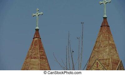 catholique, panoramique, église, arbre, &