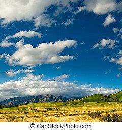 catlins, colinas
