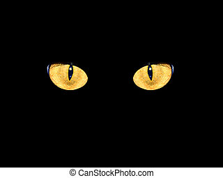 cat's eyes in darkness