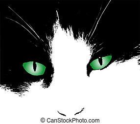 Cats eyes - Illustration of cats eyes