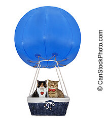 Cats in a blue hot air balloon 2