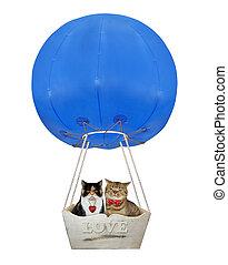 Cats in a blue hot air balloon