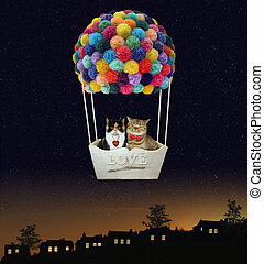 Cats in a hot air balloon 2