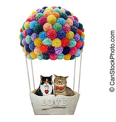 Cats in a hot air balloon