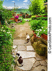 Cats in ancient garden, Italy