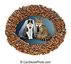 Cats newlyweds in dry food frame 2