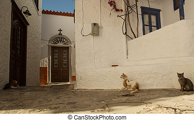 Cats on the old street of the Monemvasia island, Greece.