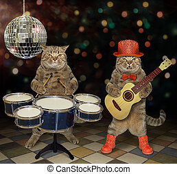 Cats perform in a nightclub 2