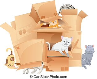 Cats Playing Cardboard Boxes