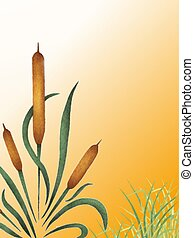 Cattail - Watercolor of cattails