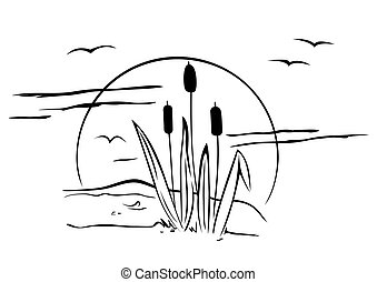 Cattails on illustration - Evening view with cattails and ...