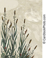Cattails - Raster Illustration