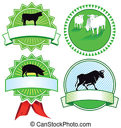 cattle breeding signs