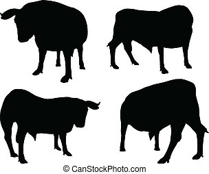 cattle collection - vector silhouette