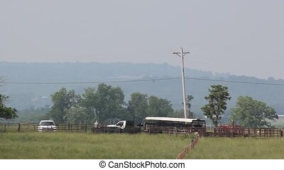 Cattle Hauler Still Stuck - They thought everything was OK...