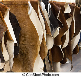 Cattle hides cow, hanging showcase in store different colo