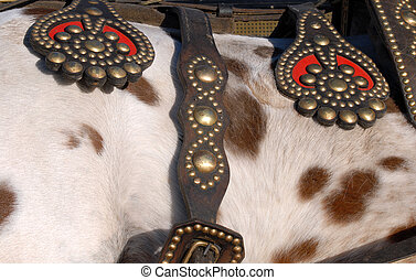 Cattle saddle detail. Leather and metal texture