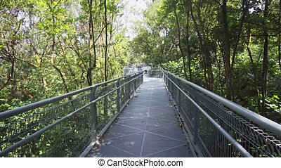 Catwalk through the Treetops at Telok Blangah Hill Park -...