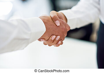 Caucasian businessman shaking hands with businesswoman in an...