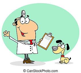 Veterinarian Man