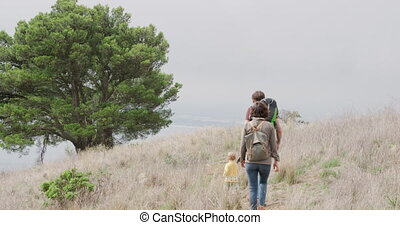 Caucasian family walking in forest - Rear view of a ...