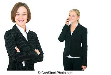 Caucasian Female Businesswoman