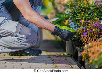 Caucasian Gardener Buying New Plants For His Garden Project