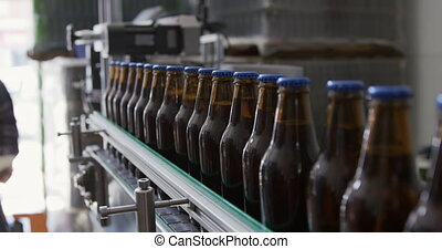 Caucasian man checking bottles of beer at a microbrewery - A...