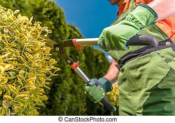 Landscaping Industry Job