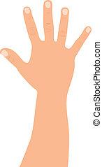 open hand - caucasian open hand over white background....