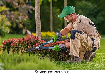 Caucasian Professional Garden Worker Trimming Plants