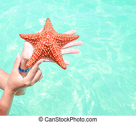 Caucasian white girl in the Caribbean holds a red starfish on a sea background in the Dominican Republic