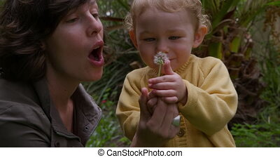 Caucasian woman blowing on flower with baby in garden - Side...