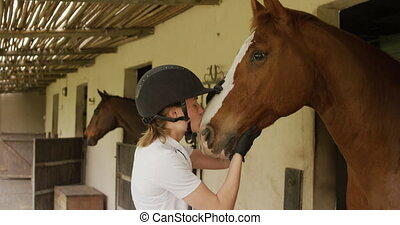 Caucasian woman with her horse - Dressage jockey getting ...