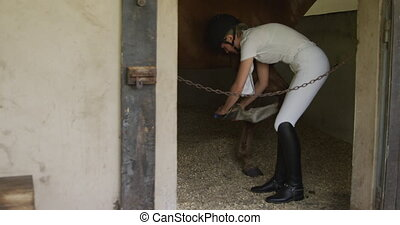 caucasien femme, soin, cheval, dressage, elle, prendre